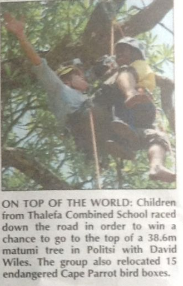 3champions measured-letaba herald 2